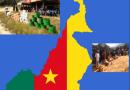 Plan D'assistance Humanitaire D'urgence Dans Les Regions Du Nord-Ouest et Sud-Ouest